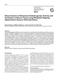 Determination of Glutamate Dehydrogenase Activity and Its Kinetics in