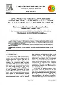 DEVELOPMENT OF NUMERICAL TOOLS FOR THE MULTISCALE ...
