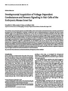 Developmental Acquisition of Voltage-Dependent ... - Semantic Scholar