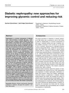 Diabetic nephropathy: new approaches for improving
