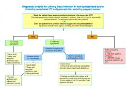 Diagnostic criteria for Urinary Tract Infection (including complicated ...