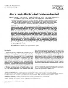 Dicer is required for Sertoli cell function and survival