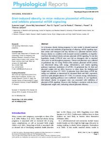 Diet-induced obesity in mice reduces placental ... - Semantic Scholar