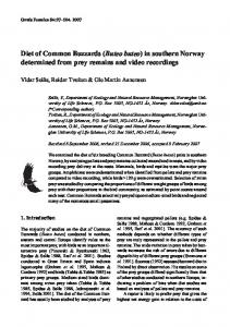 Diet of Common Buzzards (Buteo buteo) in southern Norway - Avibirds