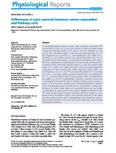 Differences in ionic currents between canine myocardial and Purkinje ...
