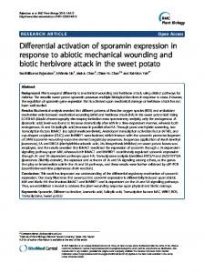 Differential activation of sporamin expression in ... - BioMedSearch