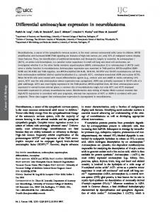 Differential aminoacylase expression in ... - Wiley Online Library