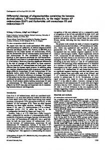 Differential cleavage of oligonucleotides containing the benzene ...