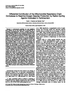 Differential Contribution of the Mitochondrial Respiratory Chain ...