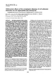 Differential effects of the cytoplasmic domains of cell adhesion ...