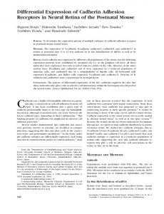 Differential Expression of Cadherin Adhesion Receptors ... - CiteSeerX
