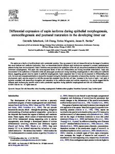 Differential expression of espin isoforms during epithelial ... - Core