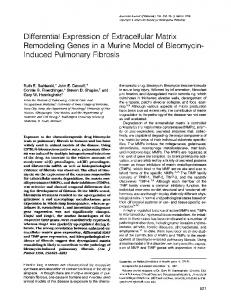 Differential expression of extracellular matrix remodeling genes in a ...