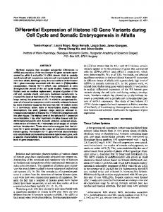 Differential Expression of Histone H3 Gene Variants during Cell Cycle ...