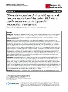 Differential expression of histone H3 genes and selective association ...