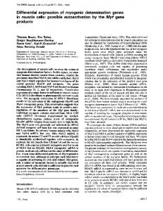 Differential expression of myogenic determination genes in muscle ...