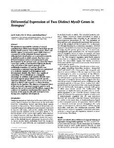 Differential Expression of Two Distinct MyoD Genes in ... - CiteSeerX