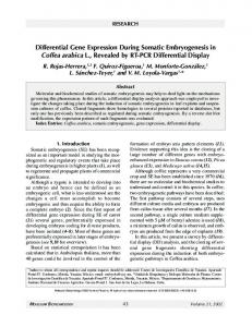 Differential Gene Expression During Somatic Embryogenesis in ...