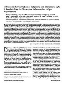 Differential Glycosylation of Polymeric and Monomeric IgA: A Possible ...