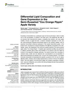 Differential Lipid Composition and Gene Expression in the Semi