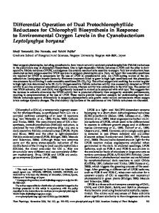 Differential Operation of Dual Protochlorophyllide ... - Plant Physiology