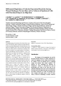 Differential Regulation of Galectin Expression/Reactivity during ...