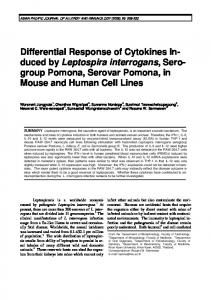 Differential Response of Cytokines In-duced by Leptospira interrogans ...