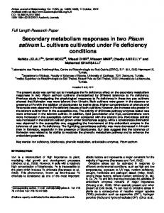 Differential responses of two Pisum sativum cultivars to Fe deficiency ...