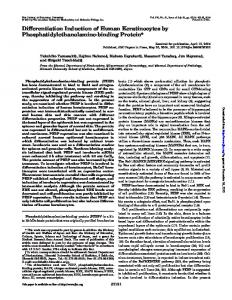 Differentiation Induction of Human Keratinocytes by ...