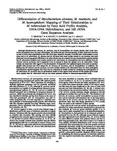 Differentiation of Mycobacterium ulcerans, M. marinum, and M ...