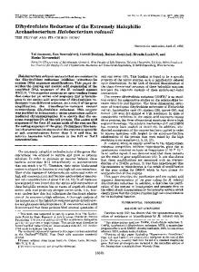 Dihydrofolate Reductase of the Extremely Halophilic Archaebacterium ...