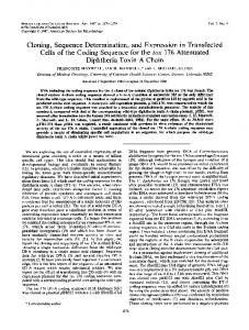 Diphtheria Toxin A Chain