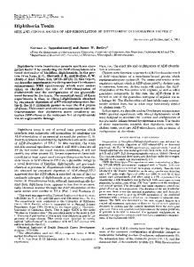 Diphtheria Toxin - Journal of Biological Chemistry