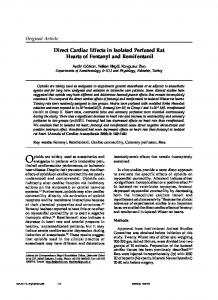 Direct Cardiac Effects in Isolated Perfused Rat Hearts of Fentanyl and ...