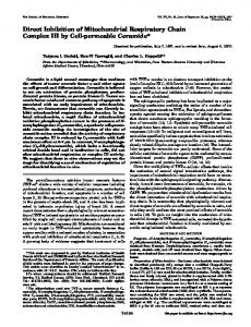 Direct Inhibition of Mitochondrial Respiratory Chain Complex III by Cell ...