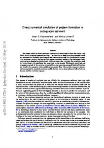 Direct numerical simulation of pattern formation in subaqueous sediment