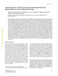 Direct Regulation of BK Channels by