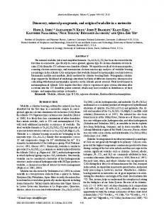 Discovery, mineral paragenesis, and origin of wadalite in a meteorite