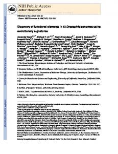 Discovery of functional elements in 12 Drosophila genomes using ...