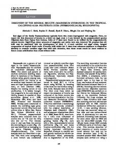 Discovery of the mineral brucite (magnesium hydroxide) in the tropical ...