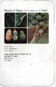 Diseases of papaya (Carica papaya L.) in Hawaii - ctahr - University ...