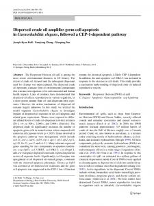 Dispersed crude oil amplifies germ cell apoptosis in ... - Springer Link