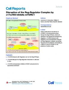 Disruption of the Rag-Ragulator Complex by c17orf59 ... - Cell Press