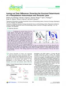 Dissecting the Structural Determinants of a Phenylalanine