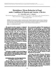 Dissimilatory nitrate reduction in fungi under conditions ... - Springer Link