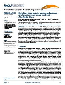 Dissimilatory nitrate reduction processes and ... - AGU Publications