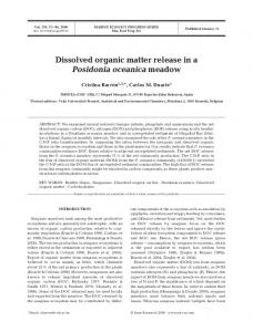 Dissolved organic matter release in a Posidonia oceanica meadow