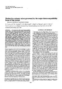 Distinctive urinary odors governed by the major histocompatibility