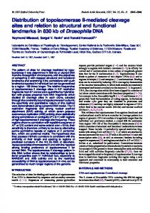 Distribution of topoisomerase II-mediated cleavage ... - BioMedSearch