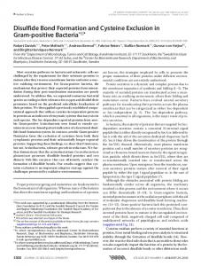 Disulfide Bond Formation and Cysteine Exclusion in Gram-positive ...